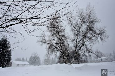 snow squalls.