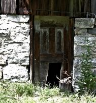 cat door.